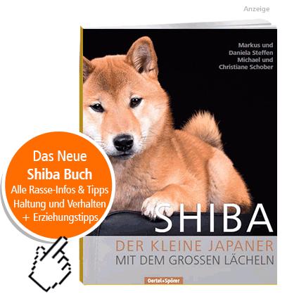 Ratgeber Buch Shiba Hunderasse